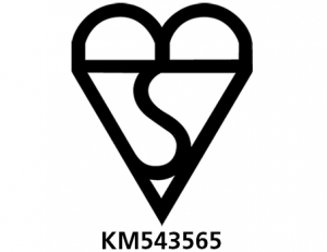 bsi_kite_logo_number